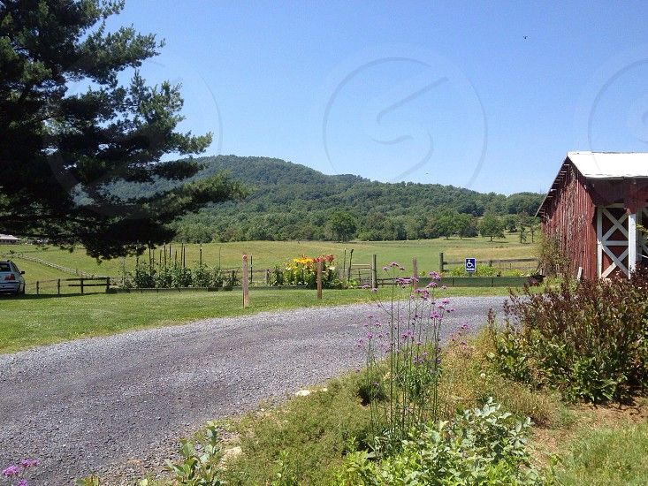 Scenic country road in Virginia  photo