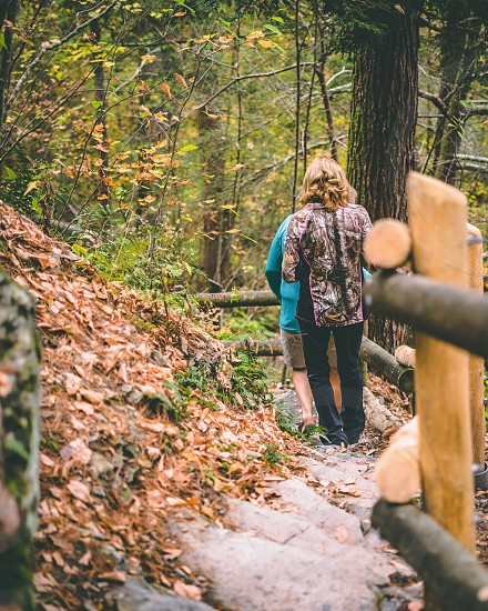 Hike trail autumn fall leaves photo