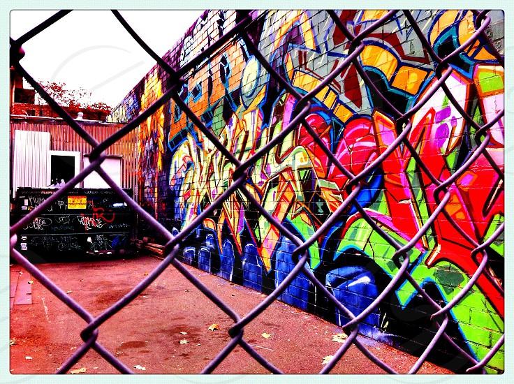 Chain-Linked Graffiti  photo
