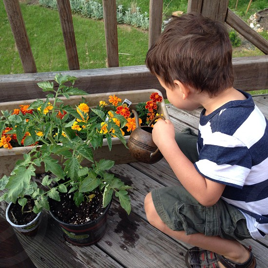 boy watering the flower photo