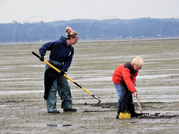 Lessons In Digging For Clams photo