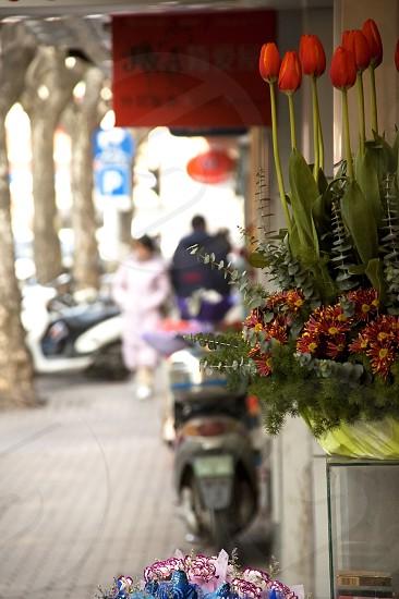 bounch of fresh flowers on shanghai  road  dof photo