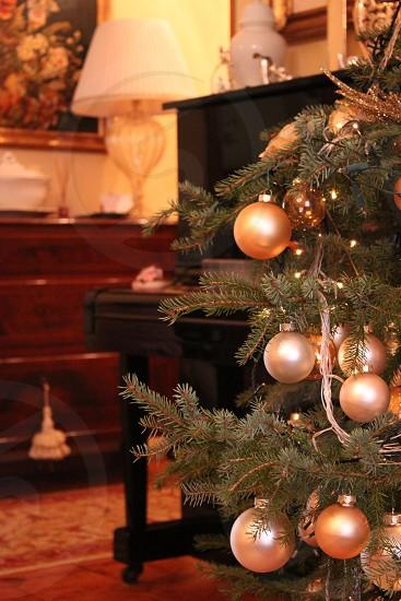 orange and silver christmas balls on a green christmas tree on dislay photo