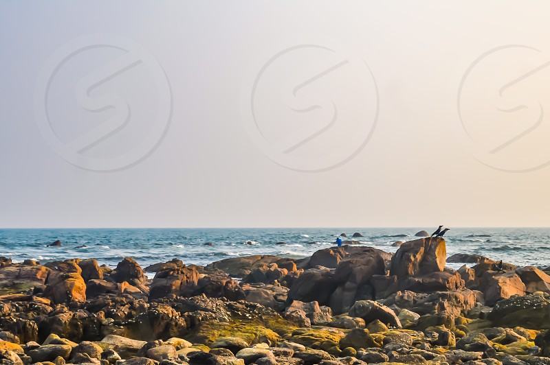 Photograph of Goa Sea Beach taken in Christmas Holiday during New Year celebration in landscape style Useful for background screen saver e-cards website banner usage Travel landscape nature Concept photo