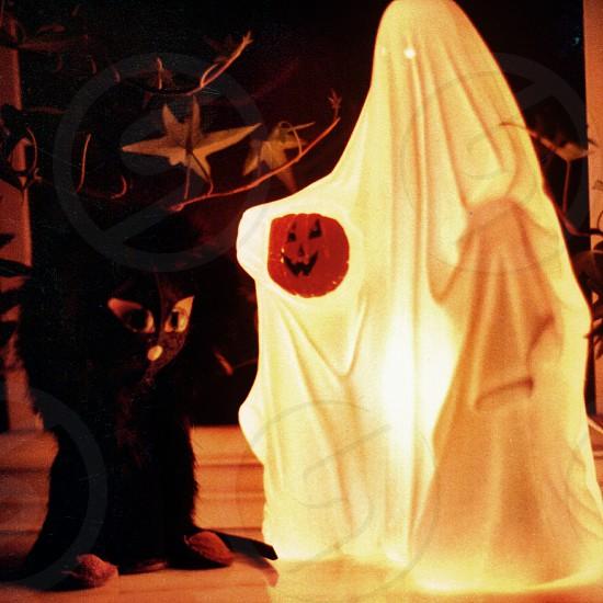 ghostly night light photo