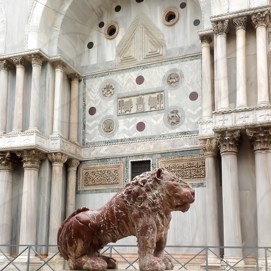 nice leon picture from City of Venice in my journy trip photo