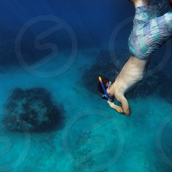man diving under the sea  photo