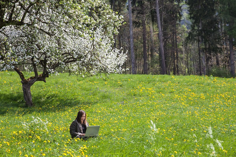woman working on computer under apple tree at spring in a field photo