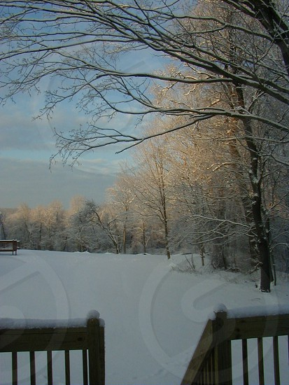 Winter scene Hamden Connecticut. photo
