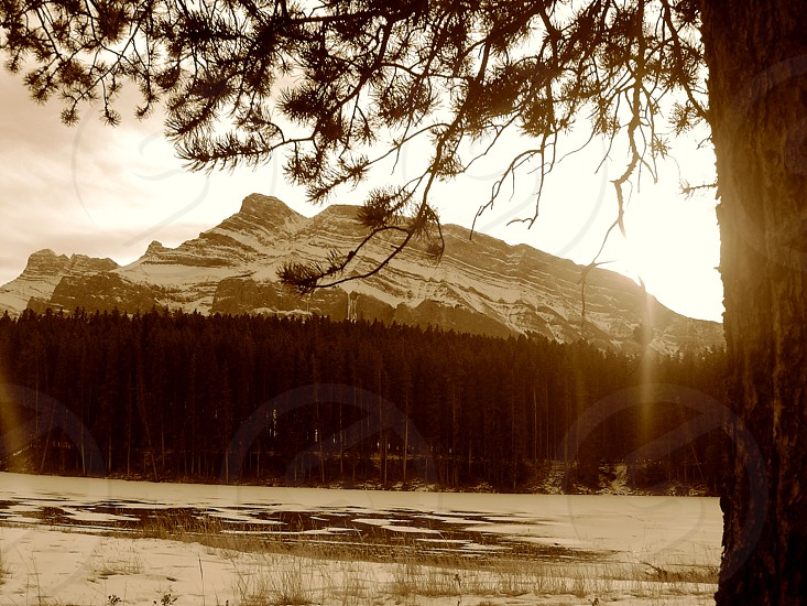 Cool sunny morning in the Rockies photo
