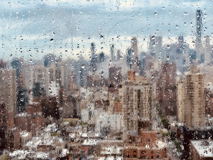 Spring showers in new york photo