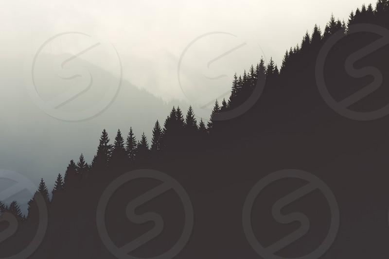 Mountains foresttrees mountain photo