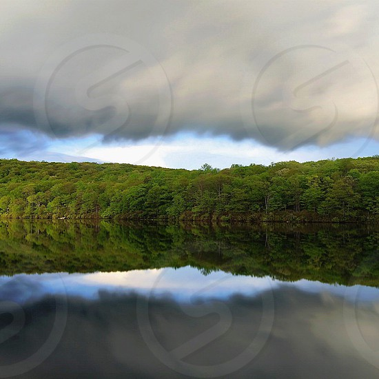 green trees and sky with water reflection below photo