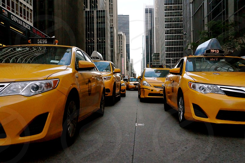 yellow taxi cabs on road photo