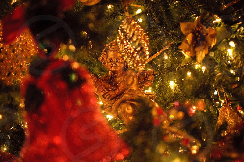 gold angel christmas tree decor photo