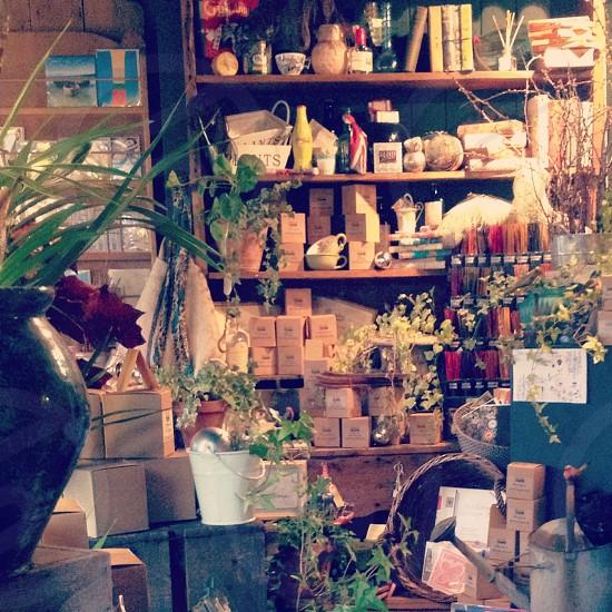 Adorable shop  photo