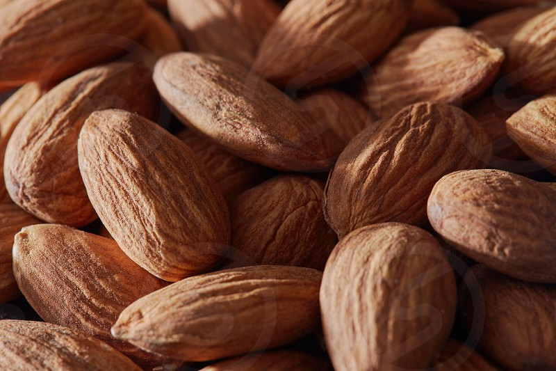 almonds plant dry seeds texture pattern background photo
