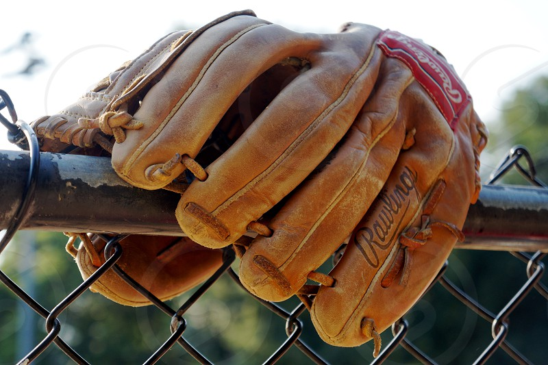 rawlings tan leather glove on chain link fence photo