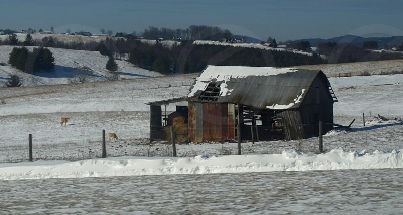 weathered barn photo