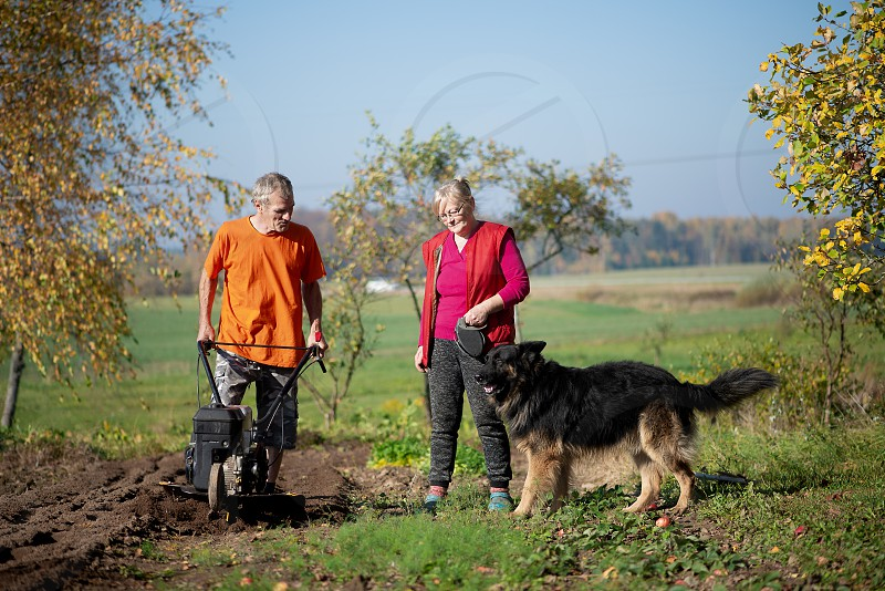 A woman who has taken her dog outside for a walk has a chat with her husband who is working at the garden. photo