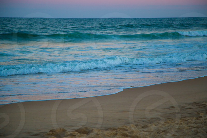 Ocean City Maryland Sunset Over the Waves photo
