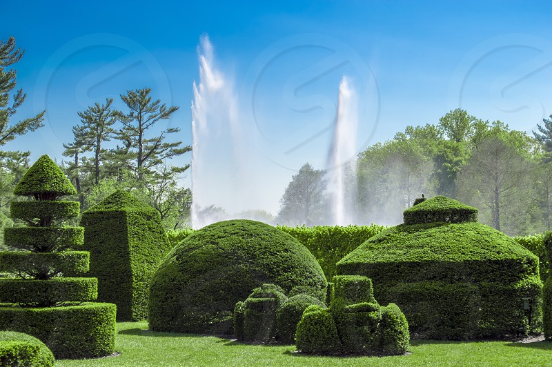 Shaped hedges and water fountains. Private outdoor gardens in Pennsylvania. photo