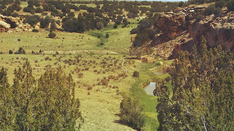 green plains photo