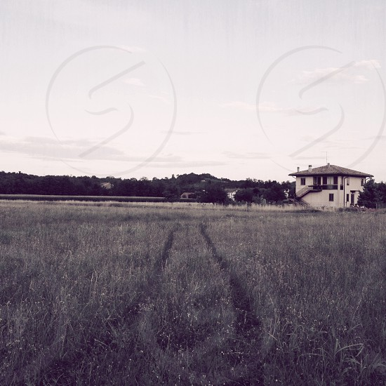 view of house on grass field photo