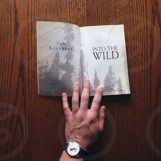 into thewild photo