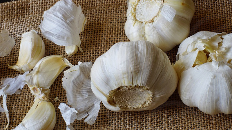 whole garlic with peeled cloves on the side photo