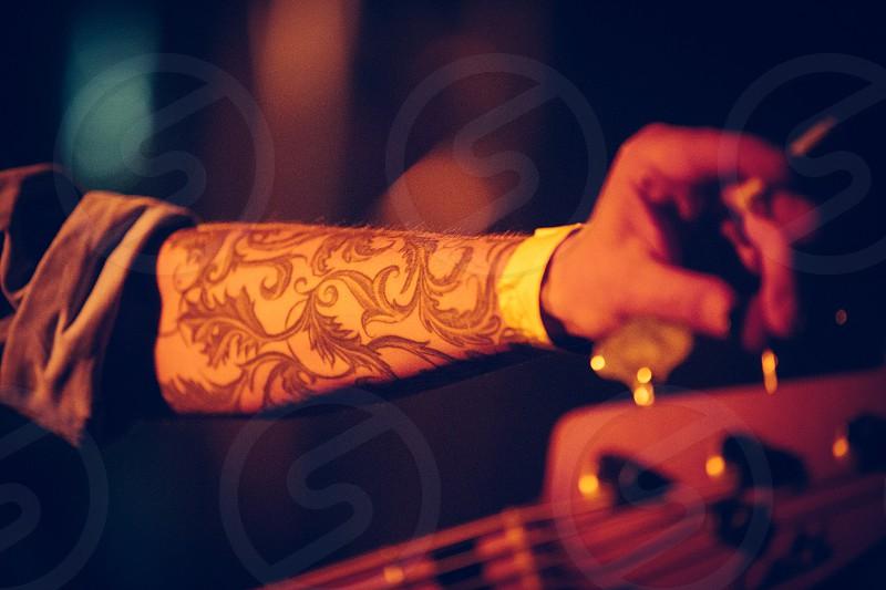 musician concert performance bass photo