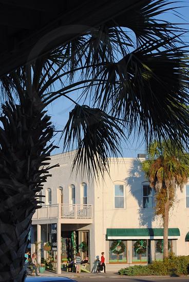 Downtown Apalachicola  photo