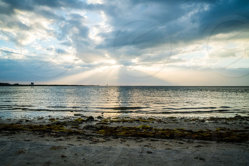 A look around Emerson Point Preserve and a beautiful sunset over Tampa Bay. photo