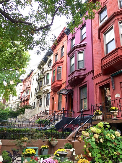 Harlem architecture and colors photo
