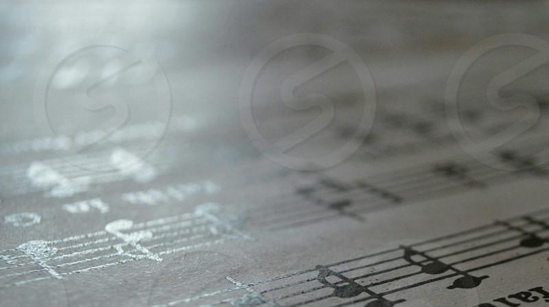 white music score photo