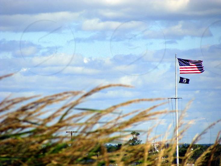 grain fields american flag waving white clouds photo