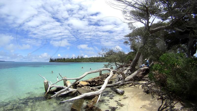 Isle of Pines New Caledonia photo