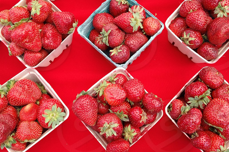 strawberries in white plastic container photo