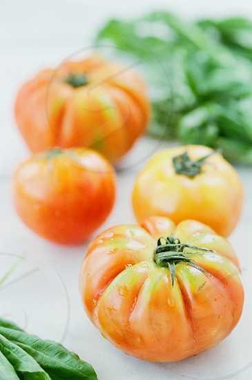 fresh farm heirloom tomatoes photo