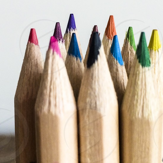 coloured coloured pencils pencil variety diversity photo