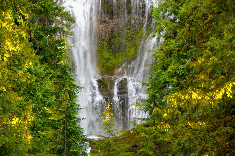 Proxy Falls Oregon Central Oregon waterfall forest photo