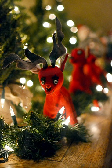 Vintage red reindeer  in greenery and Christmas holiday lights photo