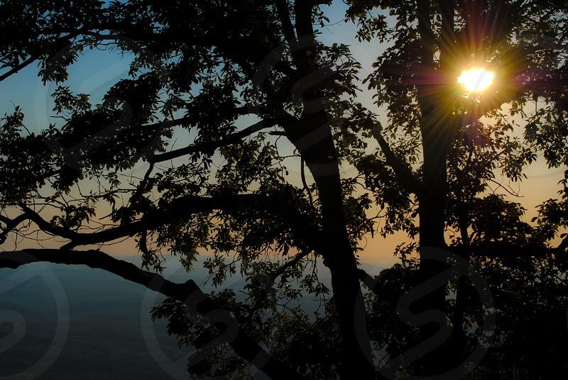 Taken from atop Mount Cheaha; tallest peak in the state of Alabama; Talladega Alabama. photo