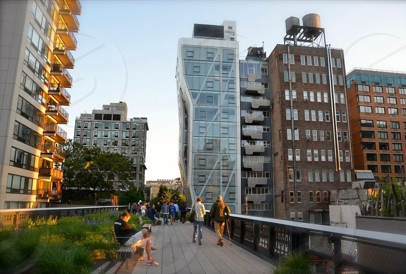 High Line NYC. photo