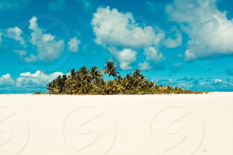 The Cook Islands photo
