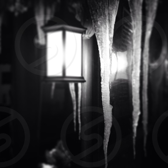 Winter / Icicles / lamp Post photo
