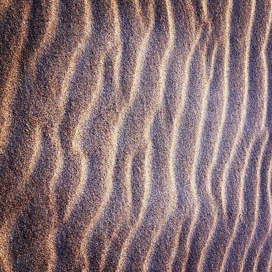 layers and textures in the sand photo