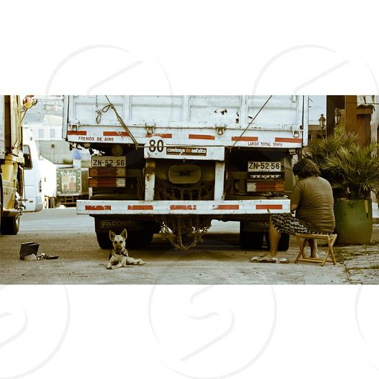 #truck #dog #man #work #gas photo