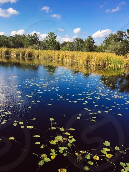 Man made lake in Orlando Fl. photo