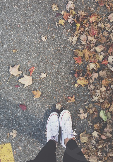 fall leafs sidewalk sneakers lululemons converse photo